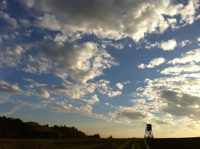 Hochsitz auf Maisfeld Stromberg