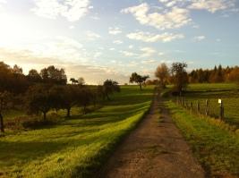 Wiesen zwischen Stromberg und Caan